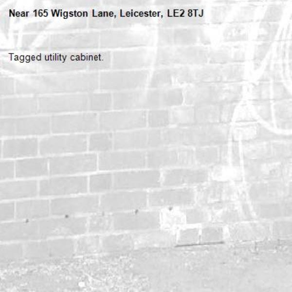 Tagged utility cabinet.-165 Wigston Lane, Leicester, LE2 8TJ