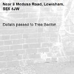 Details passed to Tree Secton-8 Medusa Road, Lewisham, SE6 4JW