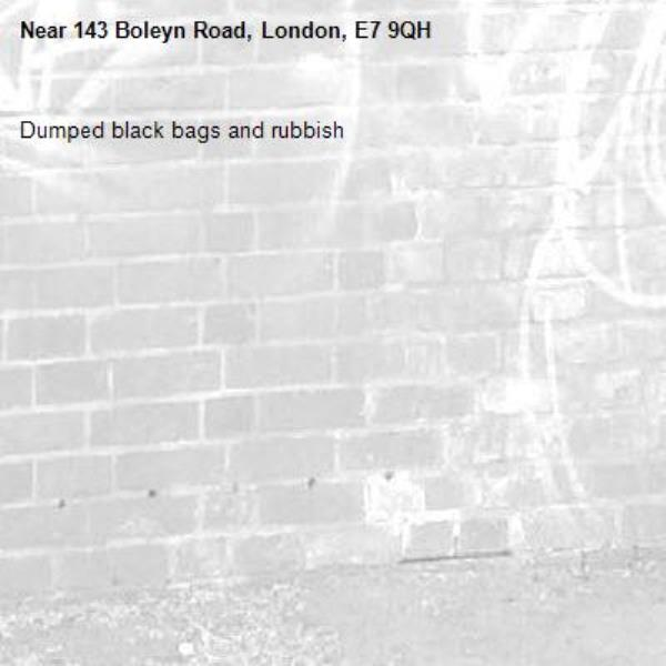 Dumped black bags and rubbish -143 Boleyn Road, London, E7 9QH