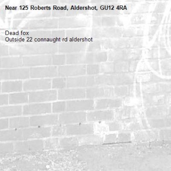 Dead fox  Outside 22 connaught rd aldershot -125 Roberts Road, Aldershot, GU12 4RA
