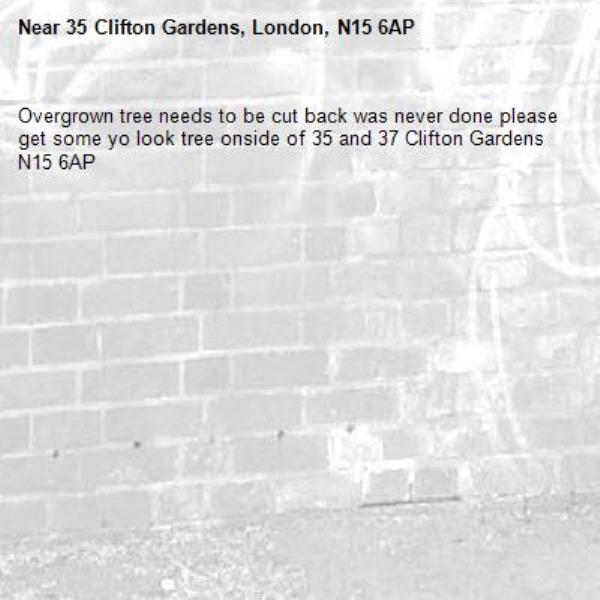 Overgrown tree needs to be cut back was never done please get some yo look tree onside of 35 and 37 Clifton Gardens N15 6AP