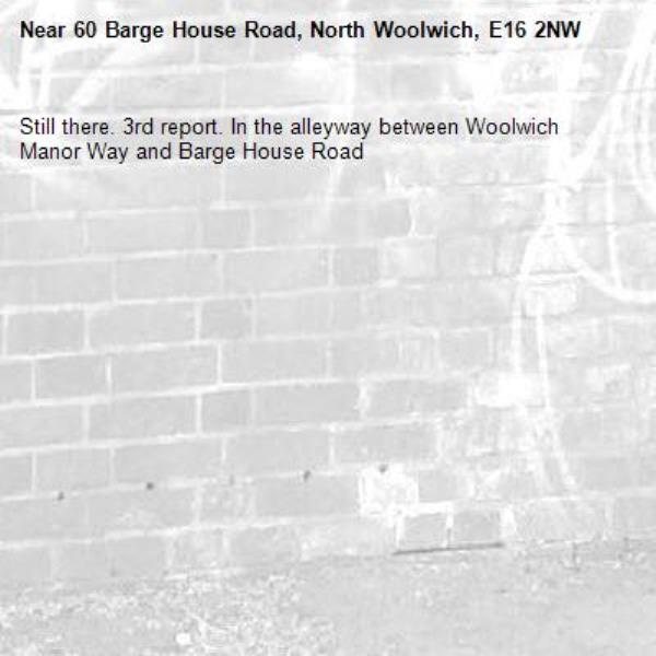 Still there. 3rd report. In the alleyway between Woolwich Manor Way and Barge House Road-60 Barge House Road, North Woolwich, E16 2NW