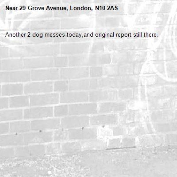 Another 2 dog messes today,and original report still there.-29 Grove Avenue, London, N10 2AS