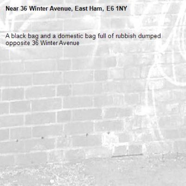 A black bag and a domestic bag full of rubbish dumped opposite 36 Winter Avenue -36 Winter Avenue, East Ham, E6 1NY