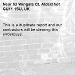 This is a duplicate report and our contractors will be clearing this underpass.-62 Wingate Ct, Aldershot GU11 1SU, UK