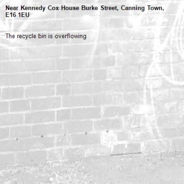 The recycle bin is overflowing -Kennedy Cox House Burke Street, Canning Town, E16 1EU