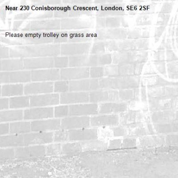 Please empty trolley on grass area-230 Conisborough Crescent, London, SE6 2SF