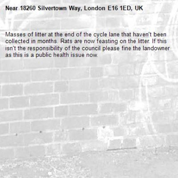 Masses of litter at the end of the cycle lane that haven't been collected in months. Rats are now feasting on the litter. If this isn't the responsibility of the council please fine the landowner as this is a public health issue now. -18260 Silvertown Way, London E16 1ED, UK