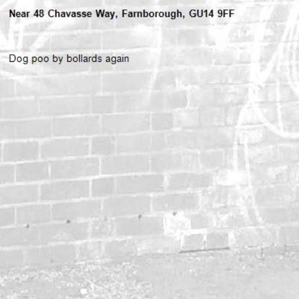 Dog poo by bollards again -48 Chavasse Way, Farnborough, GU14 9FF