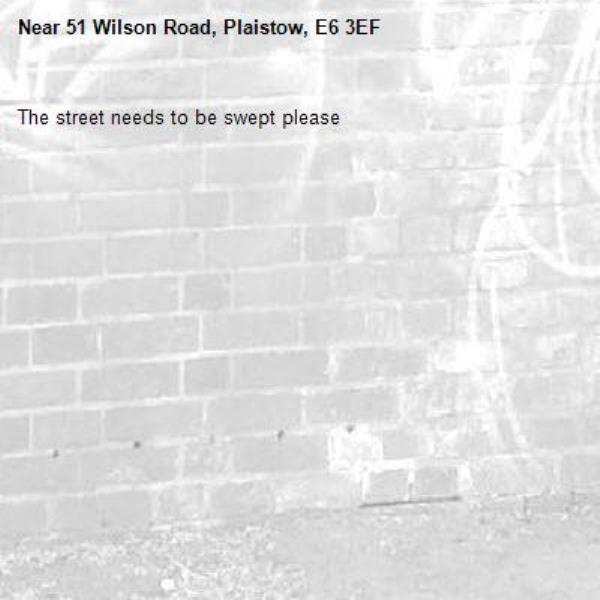 The street needs to be swept please-51 Wilson Road, Plaistow, E6 3EF