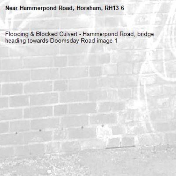 Flooding & Blocked Culvert - Hammerpond Road, bridge heading towards Doomsday Road image 1-Hammerpond Road, Horsham, RH13 6