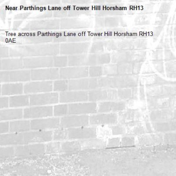 Tree across Parthings Lane off Tower Hill Horsham RH13 0AE -Parthings Lane off Tower Hill Horsham RH13
