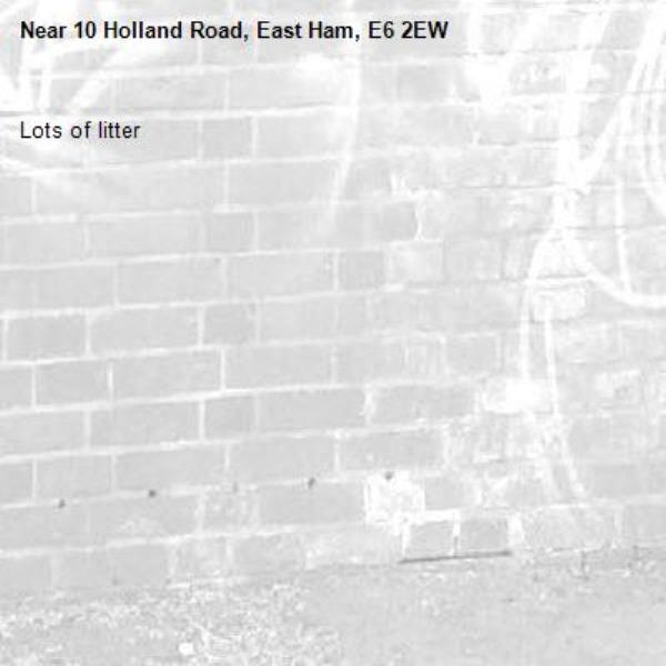 Lots of litter -10 Holland Road, East Ham, E6 2EW