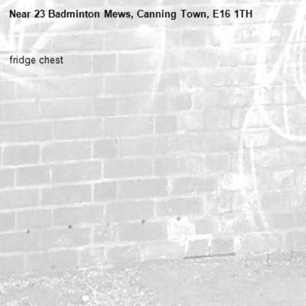 fridge chest-23 Badminton Mews, Canning Town, E16 1TH