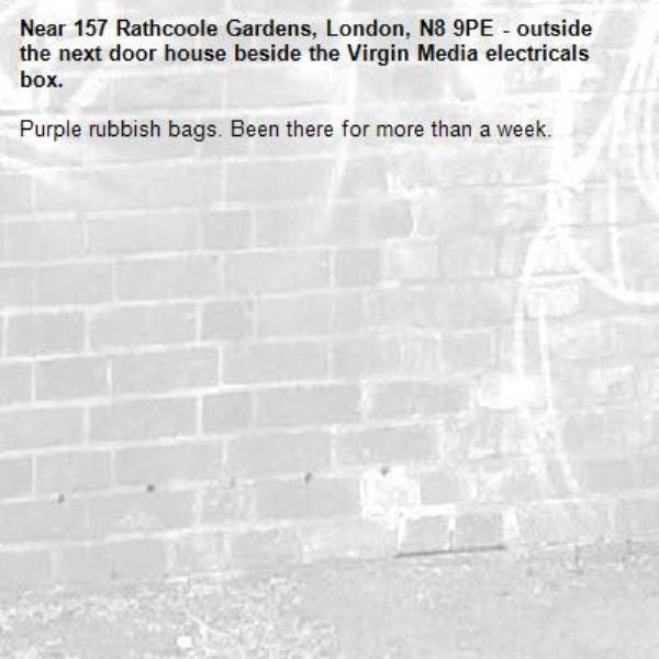 Purple rubbish bags. Been there for more than a week.-157 Rathcoole Gardens, London, N8 9PE - outside the next door house beside the Virgin Media electricals box.