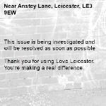 This issue is being investigated and will be resolved as soon as possible  Thank you for using Love Leicester. You're making a real difference. -Anstey Lane, Leicester, LE3 9EW