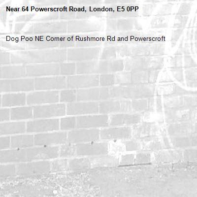 Dog Poo NE Corner of Rushmore Rd and Powerscroft -64 Powerscroft Road, London, E5 0PP