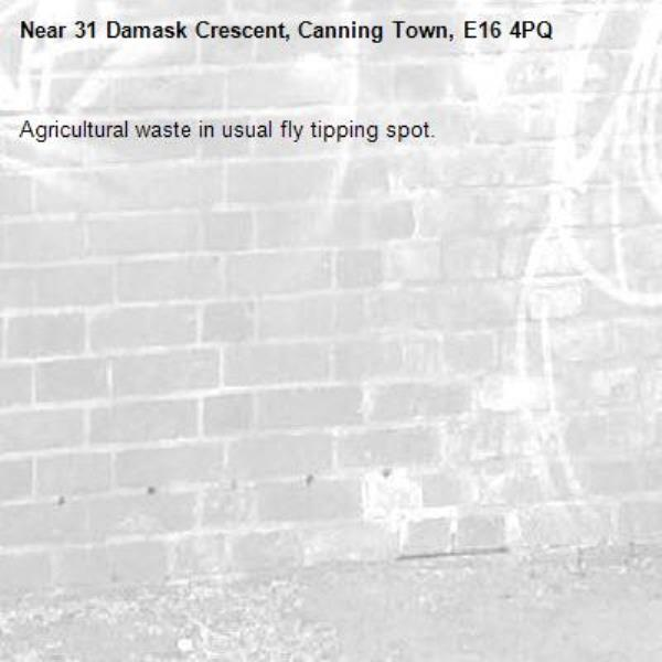 Agricultural waste in usual fly tipping spot.-31 Damask Crescent, Canning Town, E16 4PQ