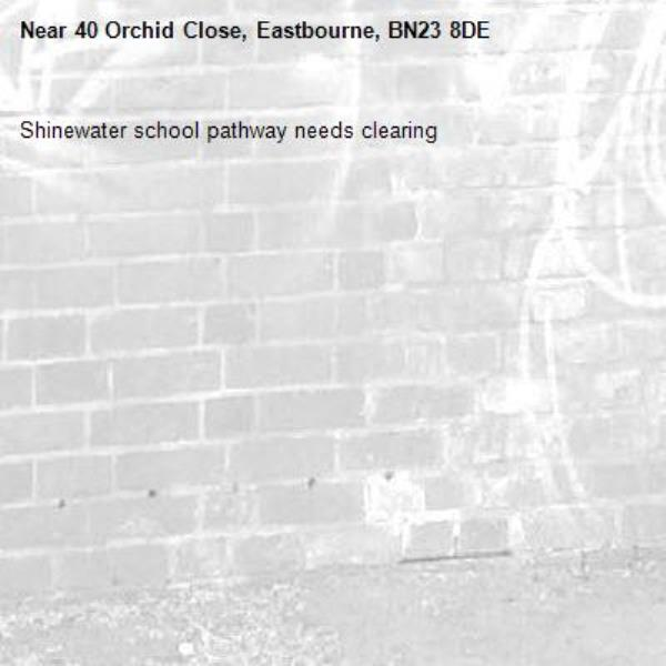 Shinewater school pathway needs clearing-40 Orchid Close, Eastbourne, BN23 8DE