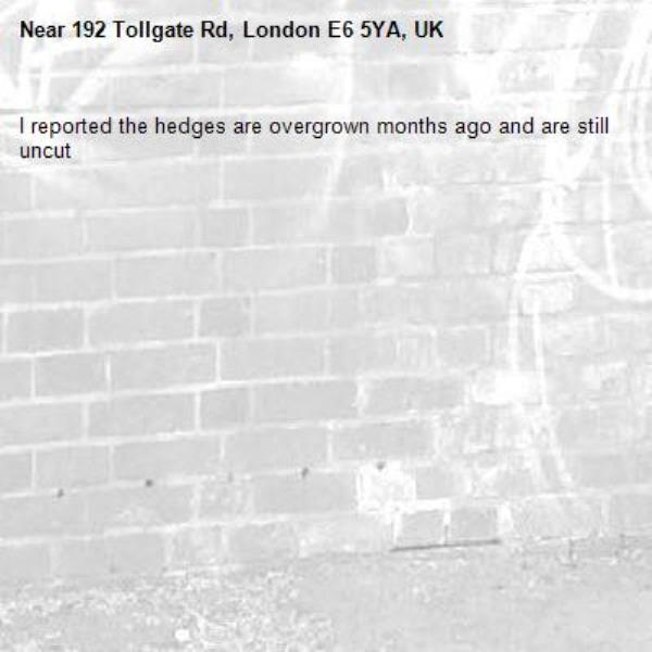 I reported the hedges are overgrown months ago and are still uncut-192 Tollgate Rd, London E6 5YA, UK