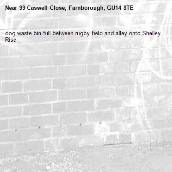 dog waste bin full between rugby field and alley onto Shelley Rise-99 Caswell Close, Farnborough, GU14 8TE