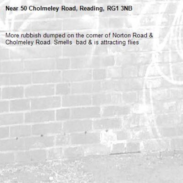 More rubbish dumped on the corner of Norton Road & Cholmeley Road. Smells  bad & is attracting flies-50 Cholmeley Road, Reading, RG1 3NB