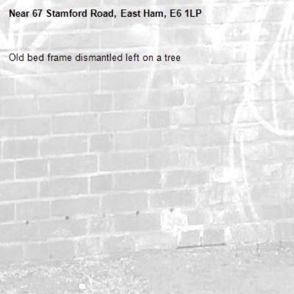 Old bed frame dismantled left on a tree-67 Stamford Road, East Ham, E6 1LP
