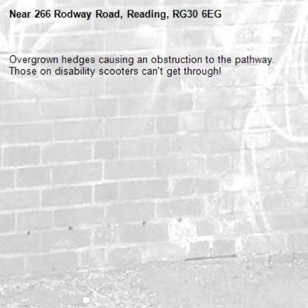 Overgrown hedges causing an obstruction to the pathway.  Those on disability scooters can't get through!-266 Rodway Road, Reading, RG30 6EG