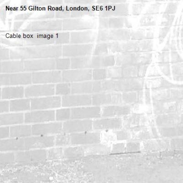Cable box  image 1-55 Gilton Road, London, SE6 1PJ