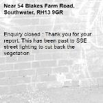 Enquiry closed : Thank you for your report. This has been past to SSE street lighting to cut back the vegetation-54 Blakes Farm Road, Southwater, RH13 9GR