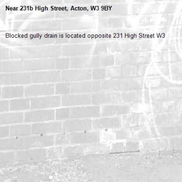 Blocked gully drain is located opposite 231 High Street W3-231b High Street, Acton, W3 9BY