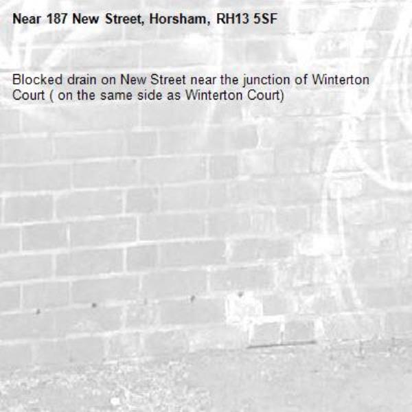 Blocked drain on New Street near the junction of Winterton Court ( on the same side as Winterton Court) -187 New Street, Horsham, RH13 5SF