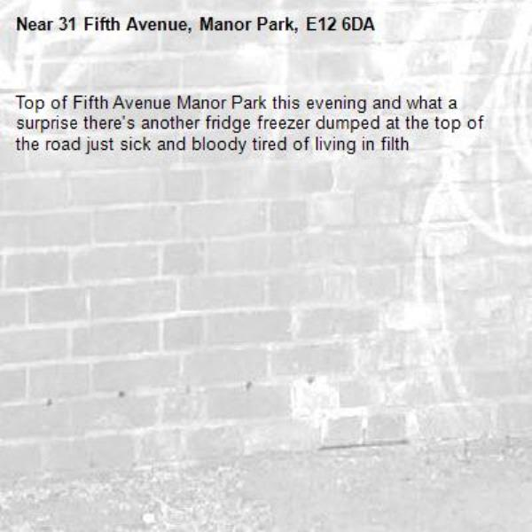 Top of Fifth Avenue Manor Park this evening and what a surprise there's another fridge freezer dumped at the top of the road just sick and bloody tired of living in filth -31 Fifth Avenue, Manor Park, E12 6DA