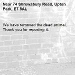We have removed the dead animal. Thank you for reporting it.-74 Shrewsbury Road, Upton Park, E7 8AL