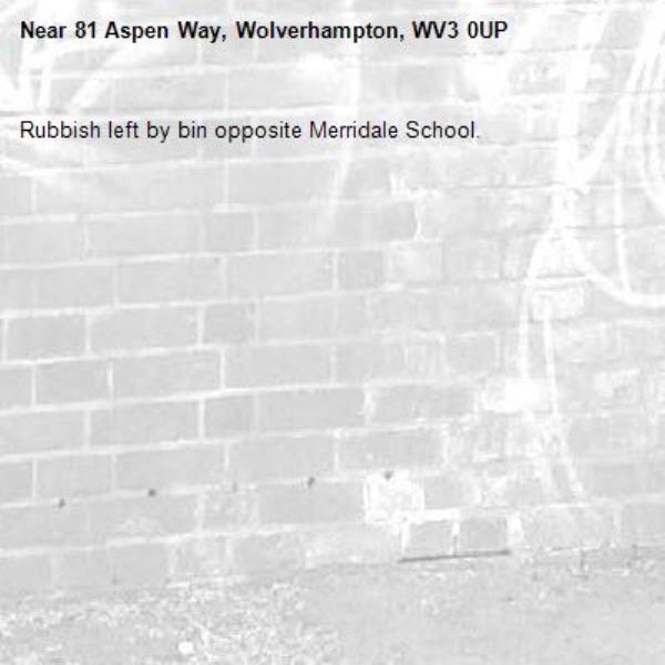 Rubbish left by bin opposite Merridale School. -81 Aspen Way, Wolverhampton, WV3 0UP