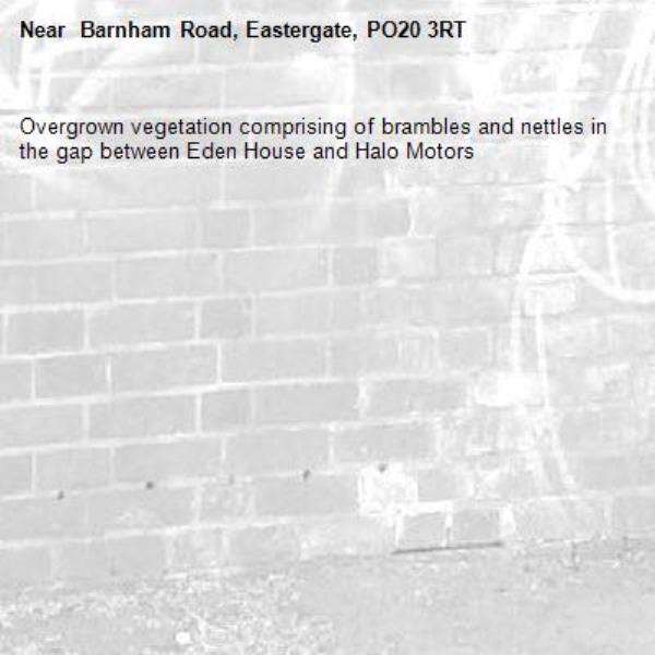 Overgrown vegetation comprising of brambles and nettles in the gap between Eden House and Halo Motors- Barnham Road, Eastergate, PO20 3RT