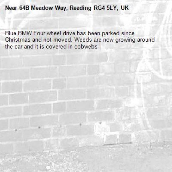 Blue BMW Four wheel drive has been parked since Christmas and not moved. Weeds are now growing around the car and it is covered in cobwebs-64B Meadow Way, Reading RG4 5LY, UK