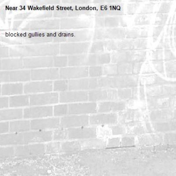blocked gullies and drains. -34 Wakefield Street, London, E6 1NQ