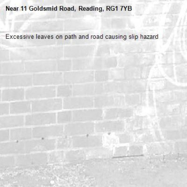 Excessive leaves on path and road causing slip hazard -11 Goldsmid Road, Reading, RG1 7YB