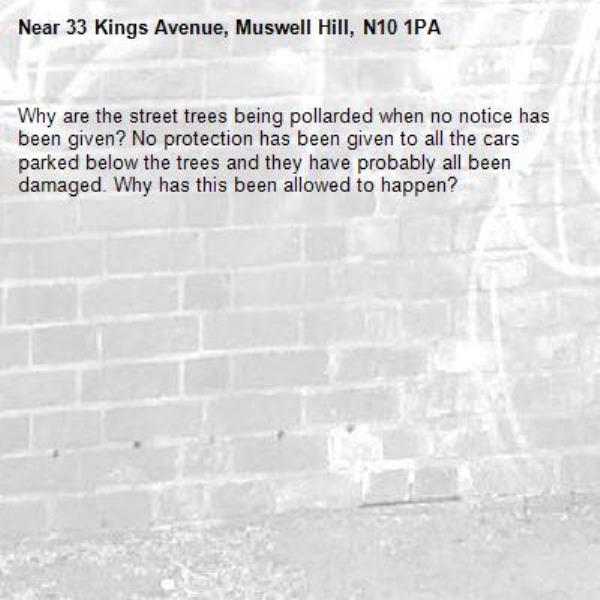 Why are the street trees being pollarded when no notice has been given? No protection has been given to all the cars parked below the trees and they have probably all been damaged. Why has this been allowed to happen?-33 Kings Avenue, Muswell Hill, N10 1PA