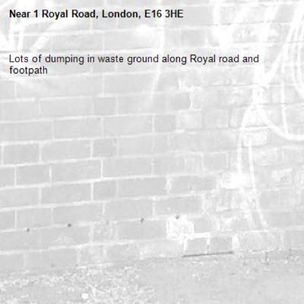 Lots of dumping in waste ground along Royal road and footpath-1 Royal Road, London, E16 3HE