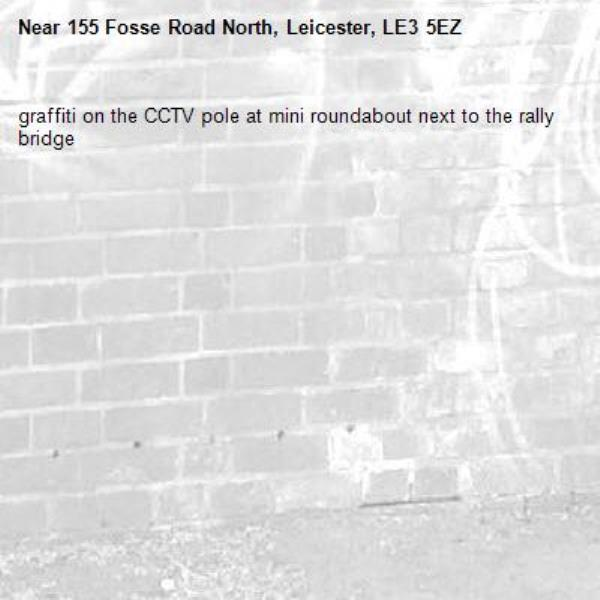 graffiti on the CCTV pole at mini roundabout next to the rally bridge-155 Fosse Road North, Leicester, LE3 5EZ