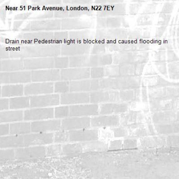 Drain near Pedestrian light is blocked and caused flooding in street-51 Park Avenue, London, N22 7EY