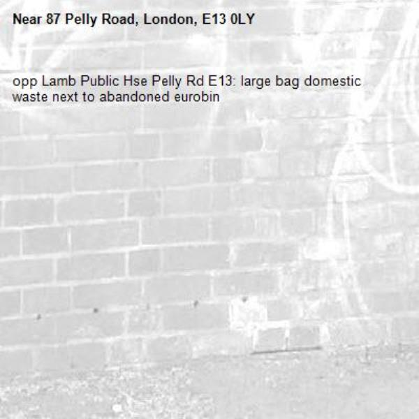 opp Lamb Public Hse Pelly Rd E13: large bag domestic waste next to abandoned eurobin -87 Pelly Road, London, E13 0LY