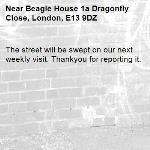 The street will be swept on our next weekly visit. Thankyou for reporting it.-Beagle House 1a Dragonfly Close, London, E13 9DZ