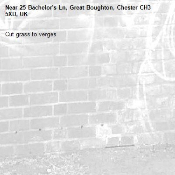Cut grass to verges-25 Bachelor's Ln, Great Boughton, Chester CH3 5XD, UK