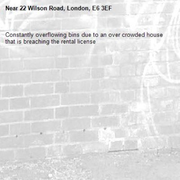 Constantly overflowing bins due to an over crowded house that is breaching the rental license -22 Wilson Road, London, E6 3EF