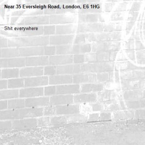 Shit everywhere-35 Eversleigh Road, London, E6 1HG