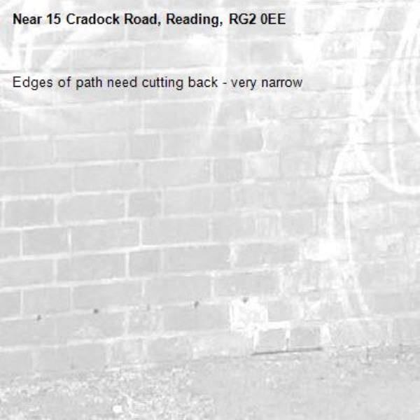 Edges of path need cutting back - very narrow -15 Cradock Road, Reading, RG2 0EE