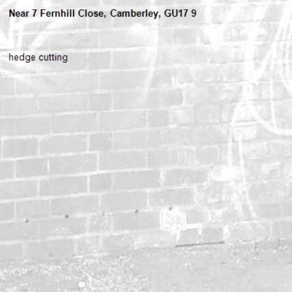 hedge cutting-7 Fernhill Close, Camberley, GU17 9